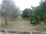 Plot of land for sale Montescaglioso, Matera